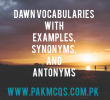 DAWN VOCABULARIES WITH EXAMPLE, SYNONYMS, and ANTONYMS